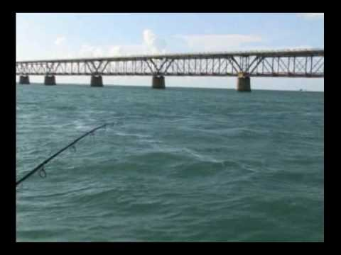 Florida Keys Flats Fishing - Tarpon Video 1
