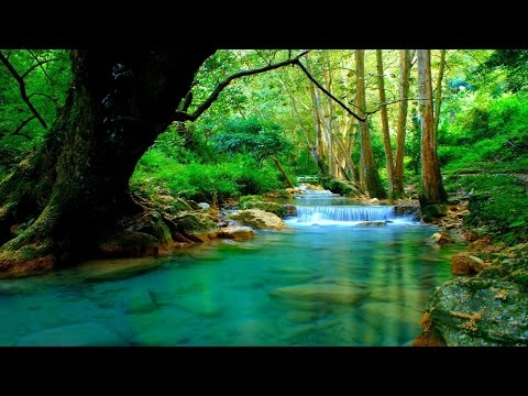 1 Hour of Beautiful Instrumental Hymns | Harp, Piano, Strings, & Orchestra