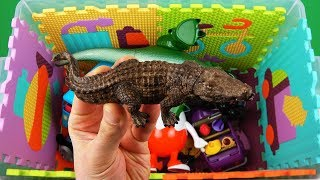 Learn characters, animals & vehicles with Thomas, McQueen, Insects, Batman etc toys videos for kids