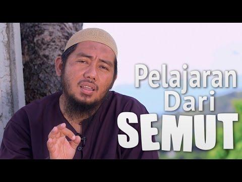 Ceramah Singkat: Pelajaran Dari Semut - Ustadz Abu Fairuz, MA.
