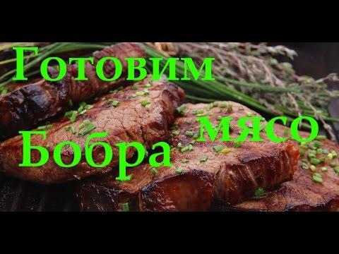 Мясо бобра как приготовить