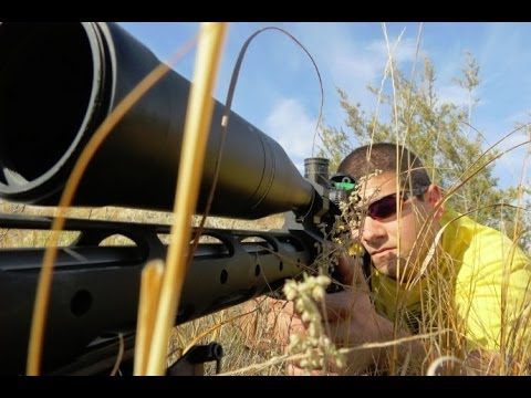Surgeon .308 Long Range Shooting (sweet bullet trace) - Rex Reviews