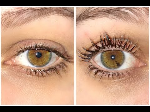 foto How To Curl Your Lashes Right