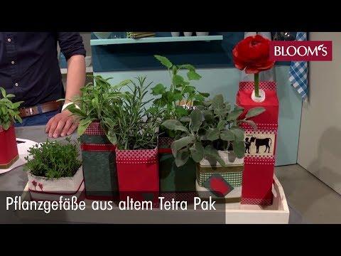 Für Ihren Indoor-Kräutergarten: Dekorative Pflanzgefäße Aus Altem Tetra Pak