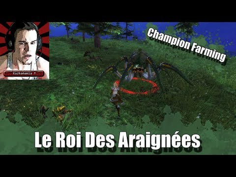 [GW2] Le Roi des Araignes ! Champion Farming