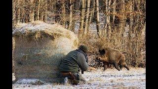 Приколы и Ржач - Опасная охота на кабанов 2017