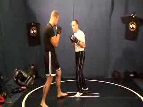 George Vranos BOXING TIPS - BOXING TRAINING - SELF DEFENSE TECHNIQUES DVD Image 1