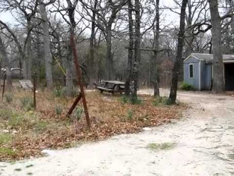 Homes for Sale - 9411 Pinewood Dr Quinlan TX 75474 - Tonya Sanders