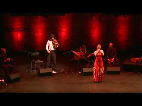 Gerard Mapstone and The DALeCAÃ'A Flamenco Company