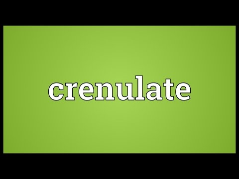 Header of crenulate