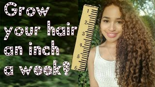Grow your hair an INCH a WEEK?! The Inversion Method!