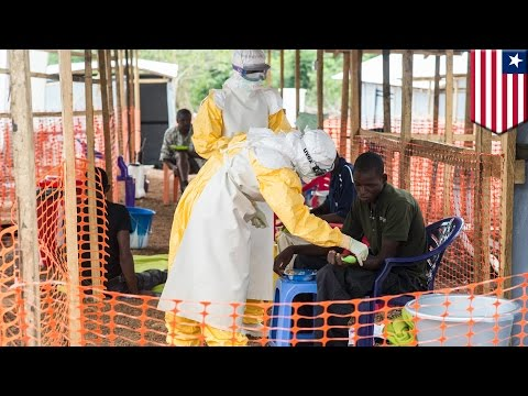 Ebola outbreak 2014: Doctors without Border runs treatment centres across West Africa