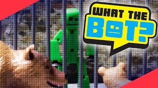 What the Bot? 💩 | The Zoo