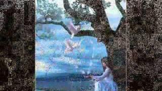 Vídeo 2 de Filhos de Cristo
