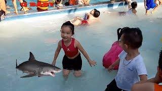 Bé Tập Bơi Nhạc Thiếu Nhi Vui Nhộn - Bé Đi Hồ Bơi - Nhạc Thiếu Nhi Hay Nhất