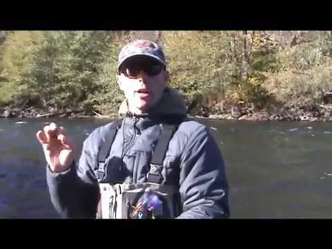 Swinging Steelhead Flies - Fly Fishing Steelhead for Beginners - Part 2