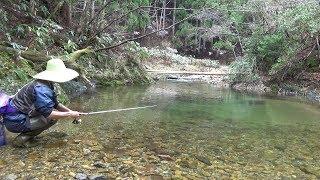Japanese Mountain Stream Lure Fishing