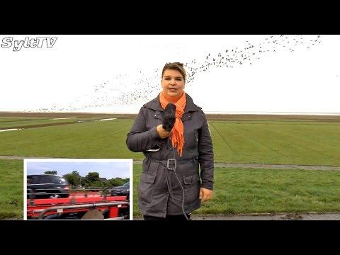 Sylt TV Videonews vom  20. Oktober 2014