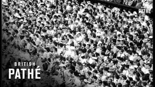 Sport - Wimbledon Women's Singles Final (1953)