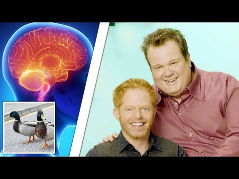 The Heart-warming Science Of Gay Dad Brains video