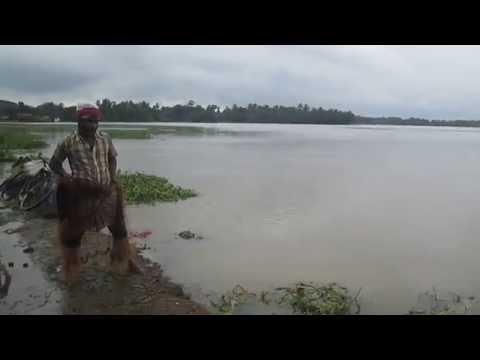 Flood 2015 Manickpur, Belmuri, Dhaniakhali,Hooghly06