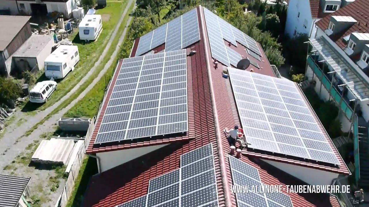 absicherung von solaranlagen gegen taubenbefall all in. Black Bedroom Furniture Sets. Home Design Ideas