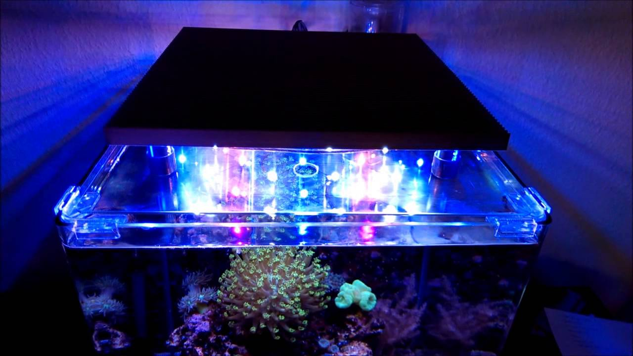 led aquarium beleuchtung bausatz von fischfutter24 youtube. Black Bedroom Furniture Sets. Home Design Ideas