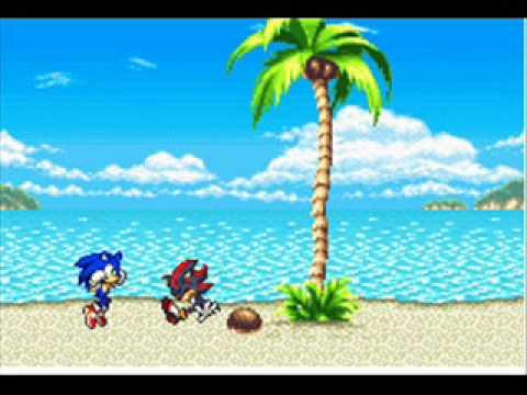 Shadow Beats Sonic Sonic Beats up Shadow