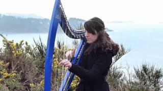 With or without you - U2 - harp / harpe (HD)