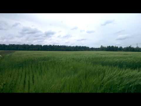HTC One (M8): Tuullisella säällä kuvattu Full HD -videonäyte