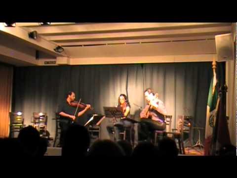 Francesco Molino - Trío Op4 Nº1 I Allegro moderato