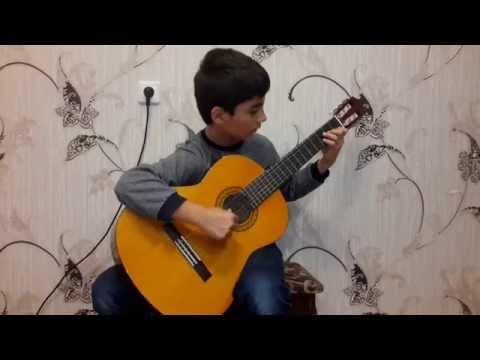 В мире животных на гитаре