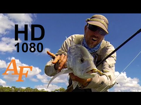 GT Flats Sight Fishing Fly Fishing Video  Giant Trevally Andysfishing EP 114