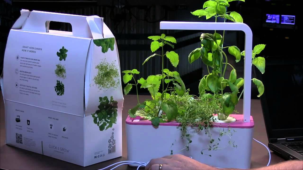 click and grow smart herb garden review youtube. Black Bedroom Furniture Sets. Home Design Ideas