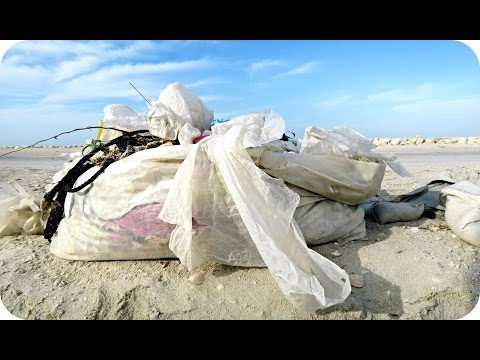 BAHRAIN BEACH CLEAN UP !!!
