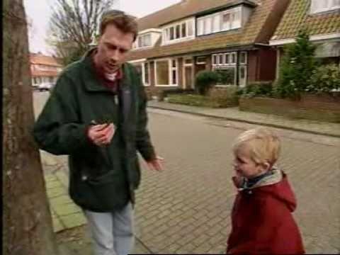 Willem Wever (1992) : Hoe komt het dat een vuurpijl pas in de lucht ontploft?