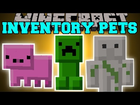 Minecraft: INVENTORY PETS MOD (INSANE SPECIAL POWERS!!) Mod Showcase