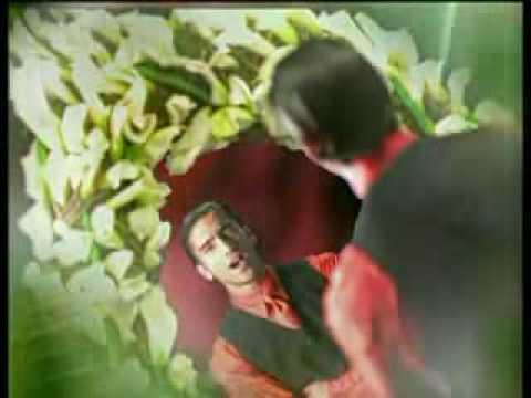 Video clip en el jardin alejandro fernandez y gloria for Alejandro fernandez en el jardin mp3