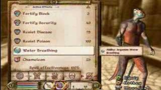Elder Scrolls 4 Oblivion: 100% Chameleon