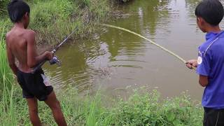 Awesome Fishing Ideas 2017 - Amazing!!! Children With Baby Duck Lure Fishing Challenge in Cambodia