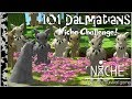 Download Searching for Spots!! • Niche: 101 Dalmatians Challenge - Episode #2 in Mp3, Mp4 and 3GP