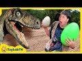 Park Ranger Takes Dinosaur Egg! Raptors Chase Aaron on Surprise Eggs Toy Hunt, Family Fun Kids Toys