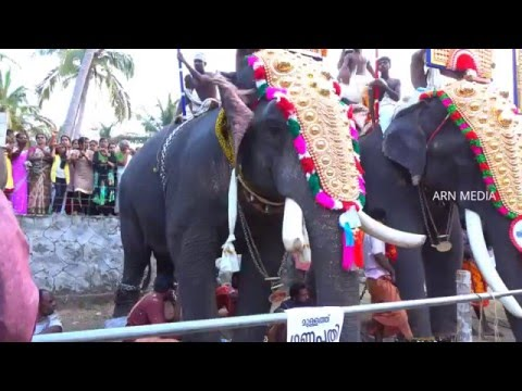 Mullath Ganapathy Kerala Elephant thumbnail