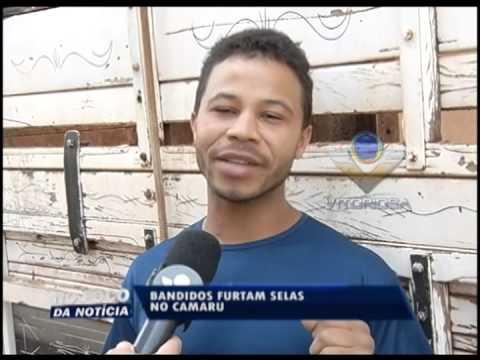 Bandidos furtam selas no Camaru avaliadas em R$ 5 mil