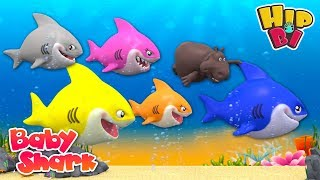 Funny Hippo Swim with Baby Shark Nursery Rhymes Songs for Kids | Hip Bi