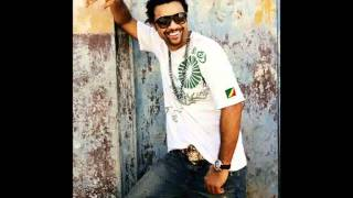 Shaggy - Big Up (with lyrics) - HD