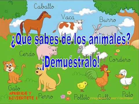 Explicacion de animales viviparos para niños - Imagui