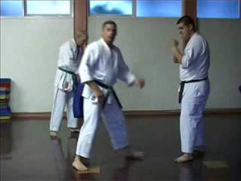 GOJU RYU KARATE - TRAINING TECHNIQUES 1 - KIHON BASICS Image 1