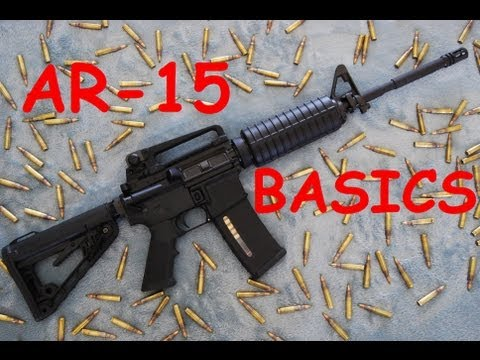 AR-15 Basics: Controls. Function. Disassembly. & Reassembly.