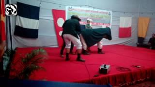 Educational horse -  Choto natok (sea scout)